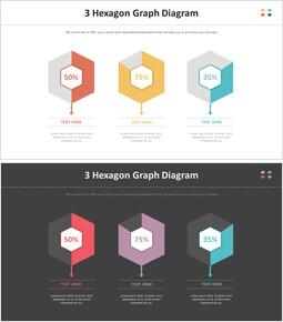 3 육각형 그래프 다이어그램_00