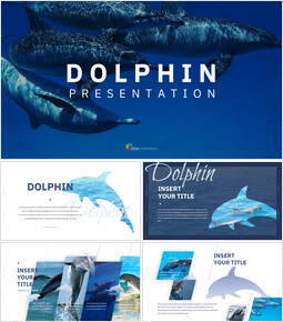 Dolphin Google Slides Templates for Your Next Presentation_00