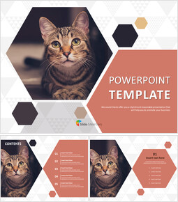 Free Powerpoint Template - Pet Cat_00