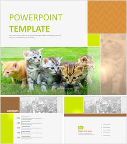 Free PPT Sample - A Kitty_6 slides