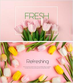 Fresh(Tulip)_00