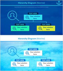 Hierarchy Diagram (Marine)_00