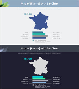 Map of (France) with Bar Chart Diagram_00