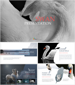 Swan Simple Google Templates_00