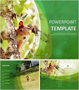 나무에 다람쥐 - 무료 PPT 샘플_00