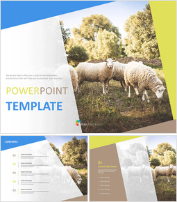 Free PPT Sample - A Flock of Sheep_00