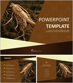 Ginseng - Free Template Design_6 slides