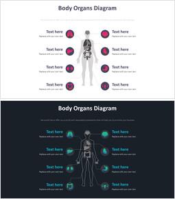 신체 기관 다이어그램_00