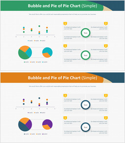 Bubble and Pie of Pie Chart (Simple)_4 slides