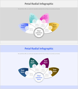 Petal Radial Infographic Diagram_00
