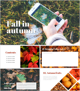 Simple PowerPoint Templates - Fall in autumn_9 slides