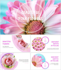 Beautiful pink flowers Google Slides Presentation Templates_00
