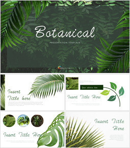 Botanical Simple Keynote Template_40 slides