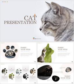 Cat Keynote Presentation Template_41 slides