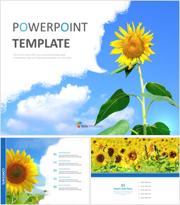 Clear Sky and Sunflowers - Free PPT Template_00