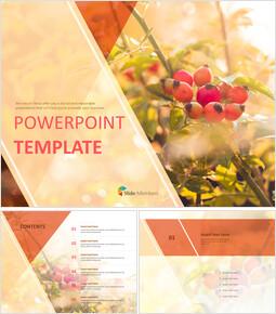 가을 과일 - 무료 파워포인트 샘플_00