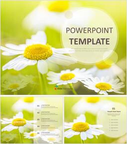 Free Powerpoint Sample - Wild Flowers_00