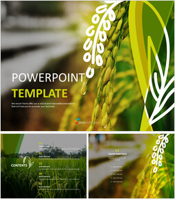 Free Powerpoint Template - An Ear of Rice_00