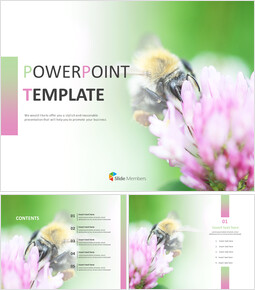 Free Template Design - Flowers and Bees_00