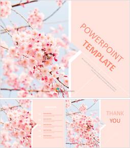 Cherry Blossom Ending - Free Images for Google Slides_00