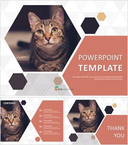 Free Google Slides themes - Pet Cat_00