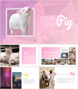 돼지의 해 테마 Google 슬라이드_00