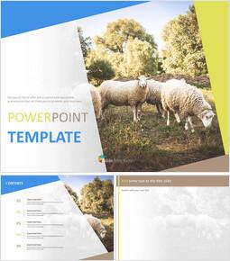A Flock of Sheep - Google Slides online Free_00