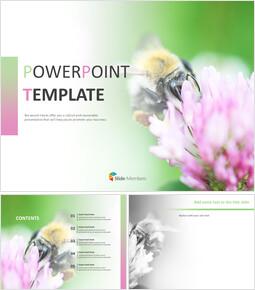 꽃과 꿀벌 - Google 슬라이드 이미지 무료 다운로드_00
