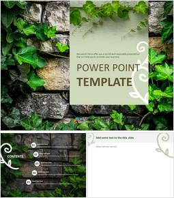아이비와 뒤틀린 나무 - Free 프레젠테이션 템플릿_6 slides
