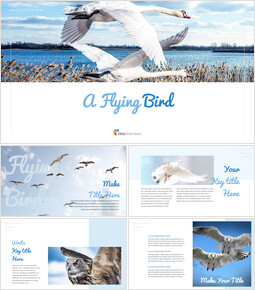 A Flying Bird Simple Google Slides Templates_00