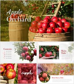 사과 과수원 프레젠테이션 PPT_00