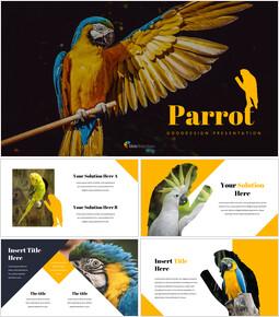 Parrot Best Google Slides_00