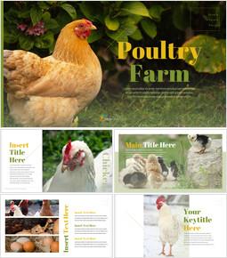 PoultryFarm Creative Google Slides_00