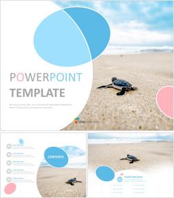 파워포인트에 사용가능한 무료 이미지 - 바다로가는 거북이_00