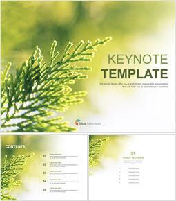 키노트 템플릿 무료 다운로드 - 실제 이미지로 황록색 잎_6 slides